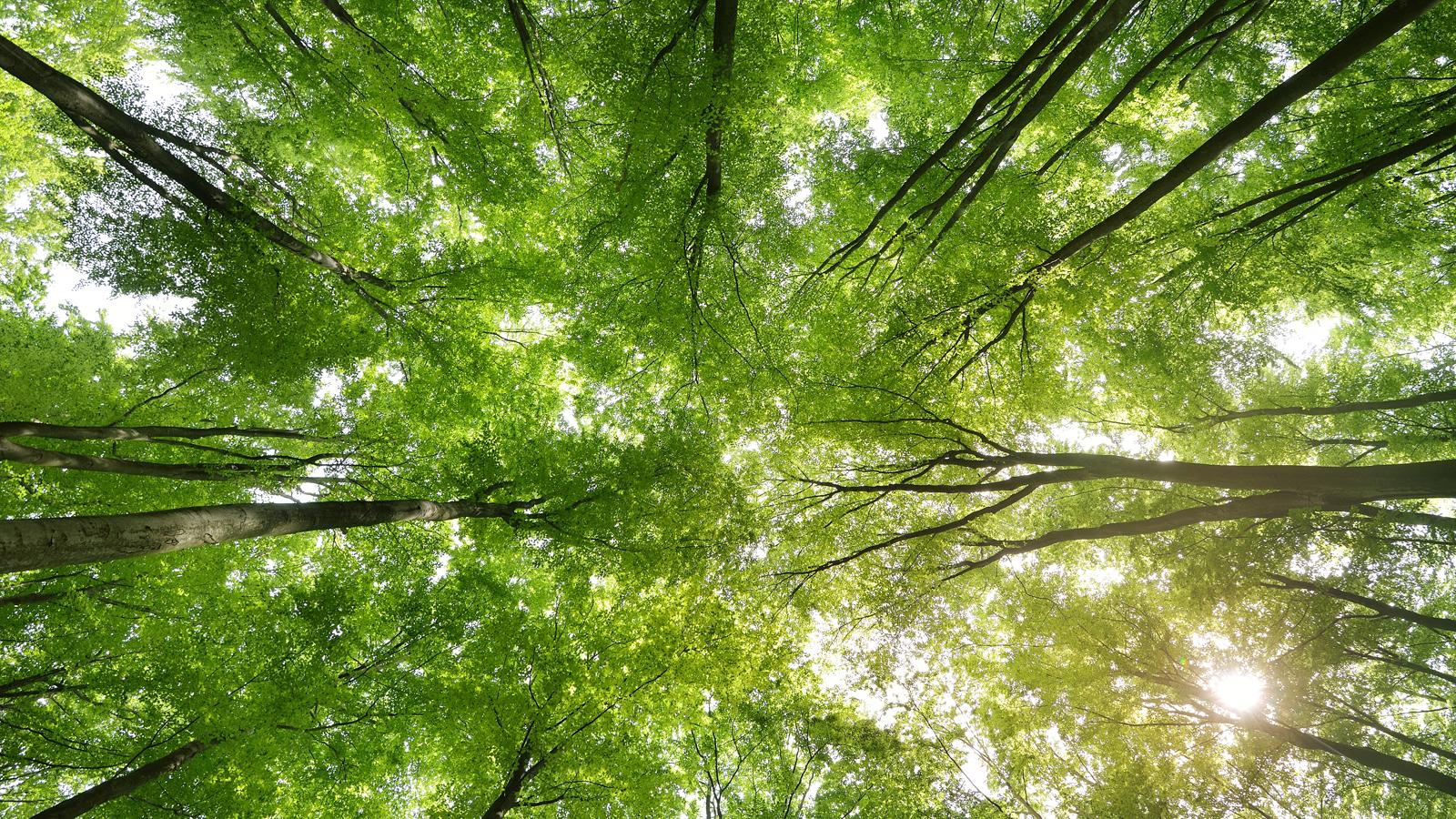 和然旅塾 身近な場所で 気軽に学び 自分を癒す。自分の人生を楽しむ学びと交流の場
