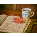 秋の夜長にゆるゆる語る読書会
